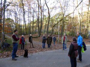 Gruppe im Wald