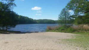 See- und Grundwasserspiegeldynamik in Schwielowsee und Umgebung @ als Online-Veranstaltung, nach Gesundheitslage auch per Präsenz